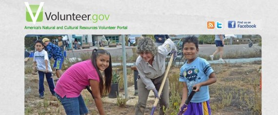 volunteergov