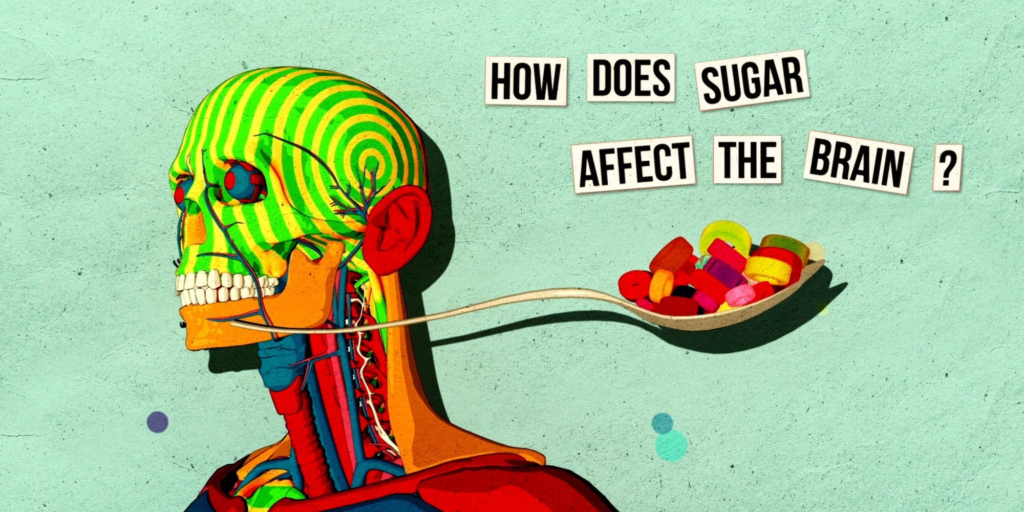 This Is Your Brain On Sugar Video