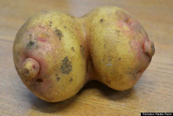 boobs potato