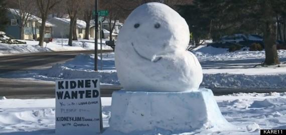 kidney snow structure