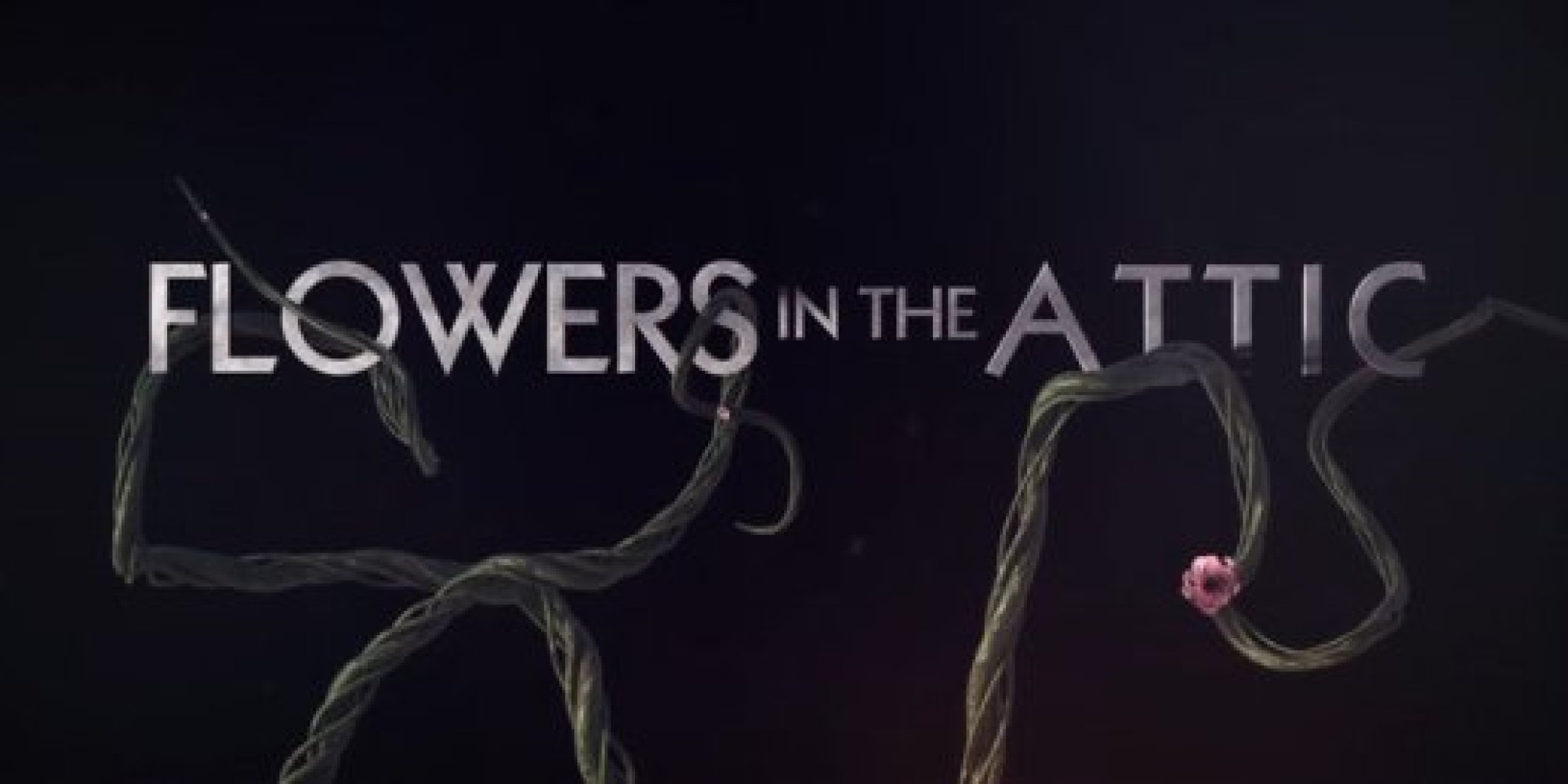 flowers in the attic writer