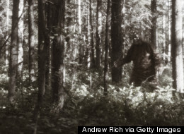 Man Claims Bigfoot Is Eating His Pizza