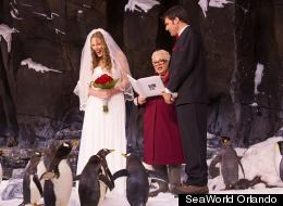 Couple's 'Chill' Wedding Included 250 Penguins