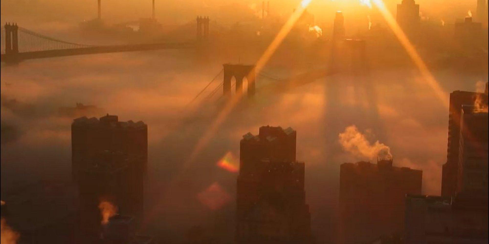 new fog park Central york city
