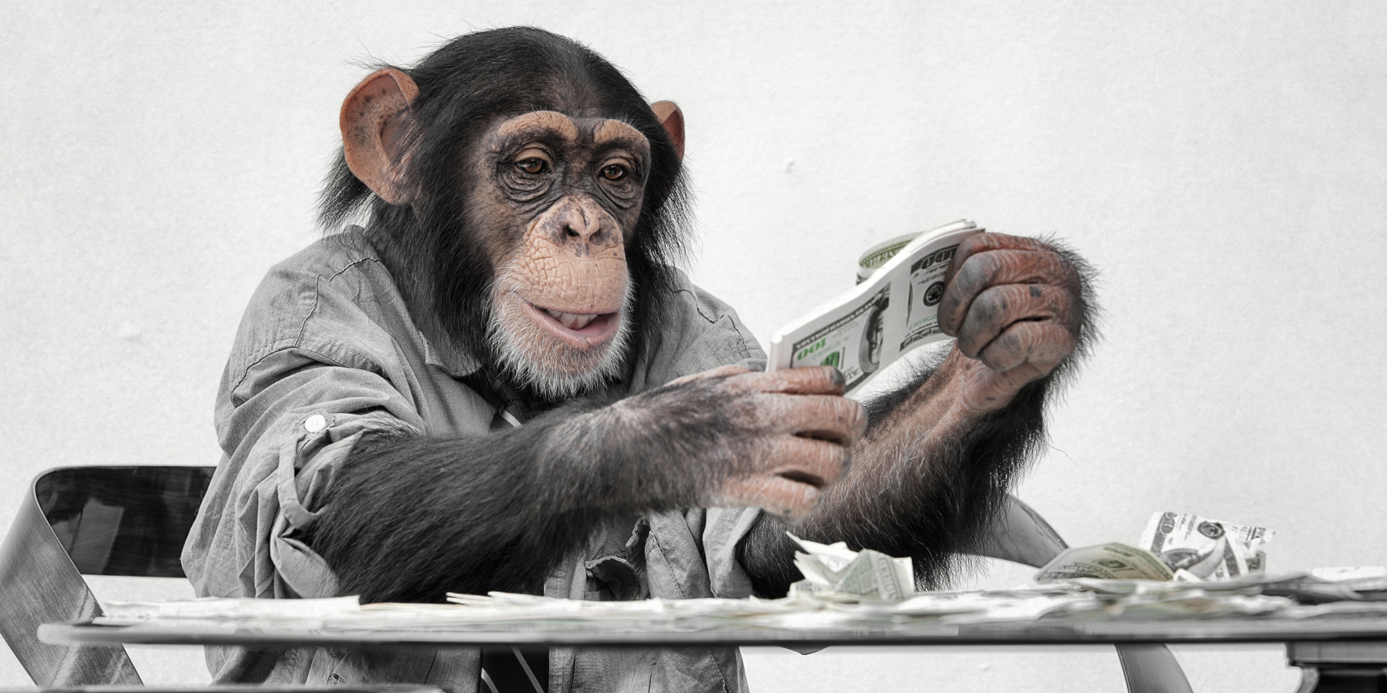 """The Fed's """"Exit Strategy""""...Monkey Money! 