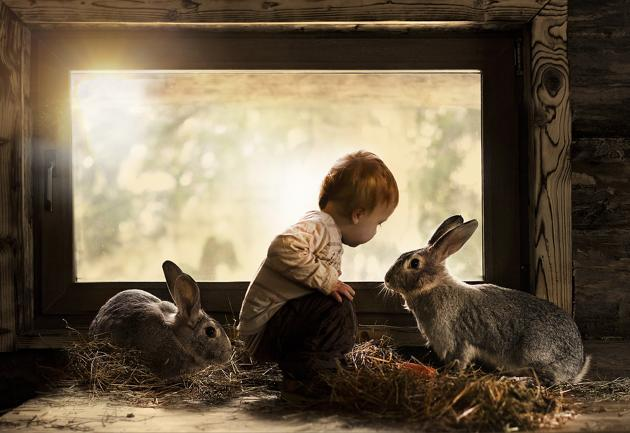 boy with two rabbits