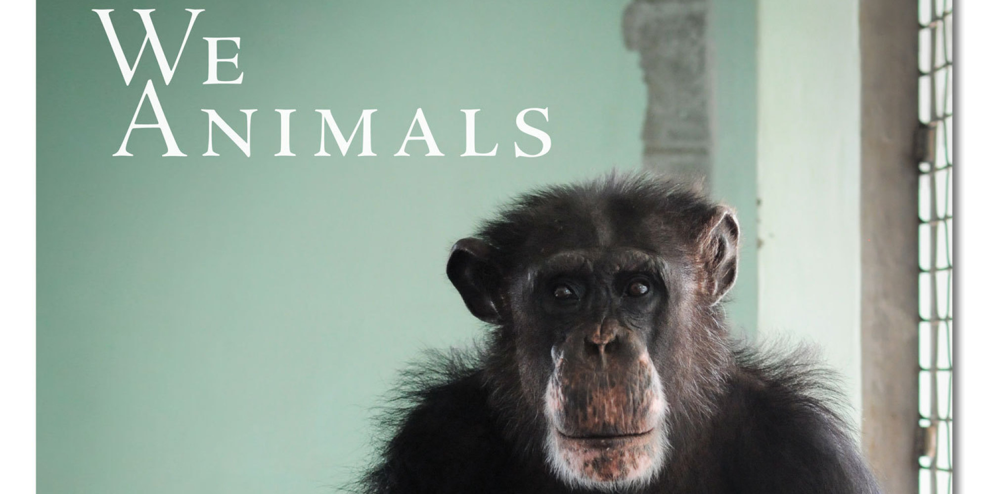 We Animals Book Exposes Sadness Of Animal Captivity With