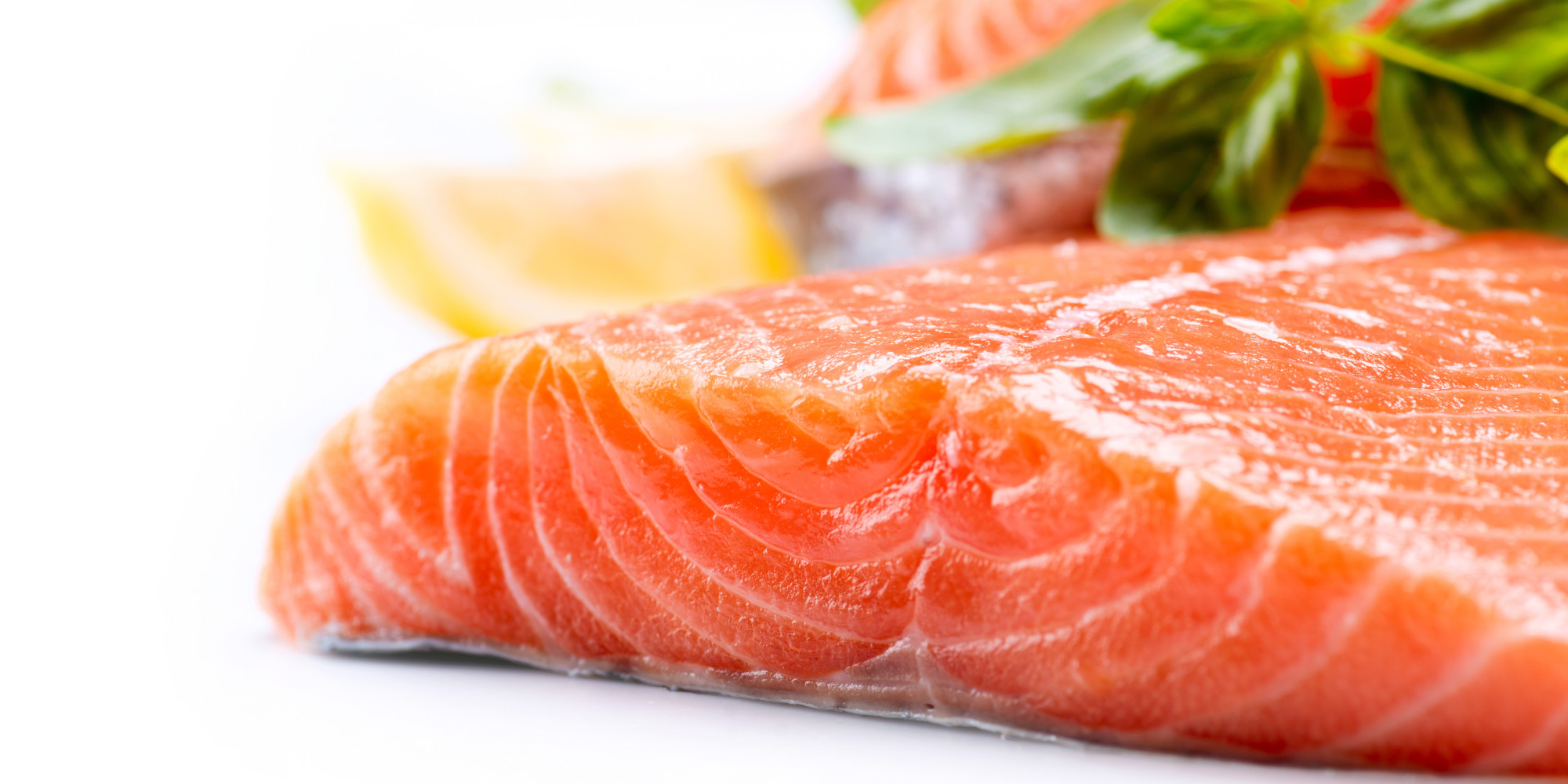 Oily fish 39 can increase brain size and help prevent memory for Fish with omega 3
