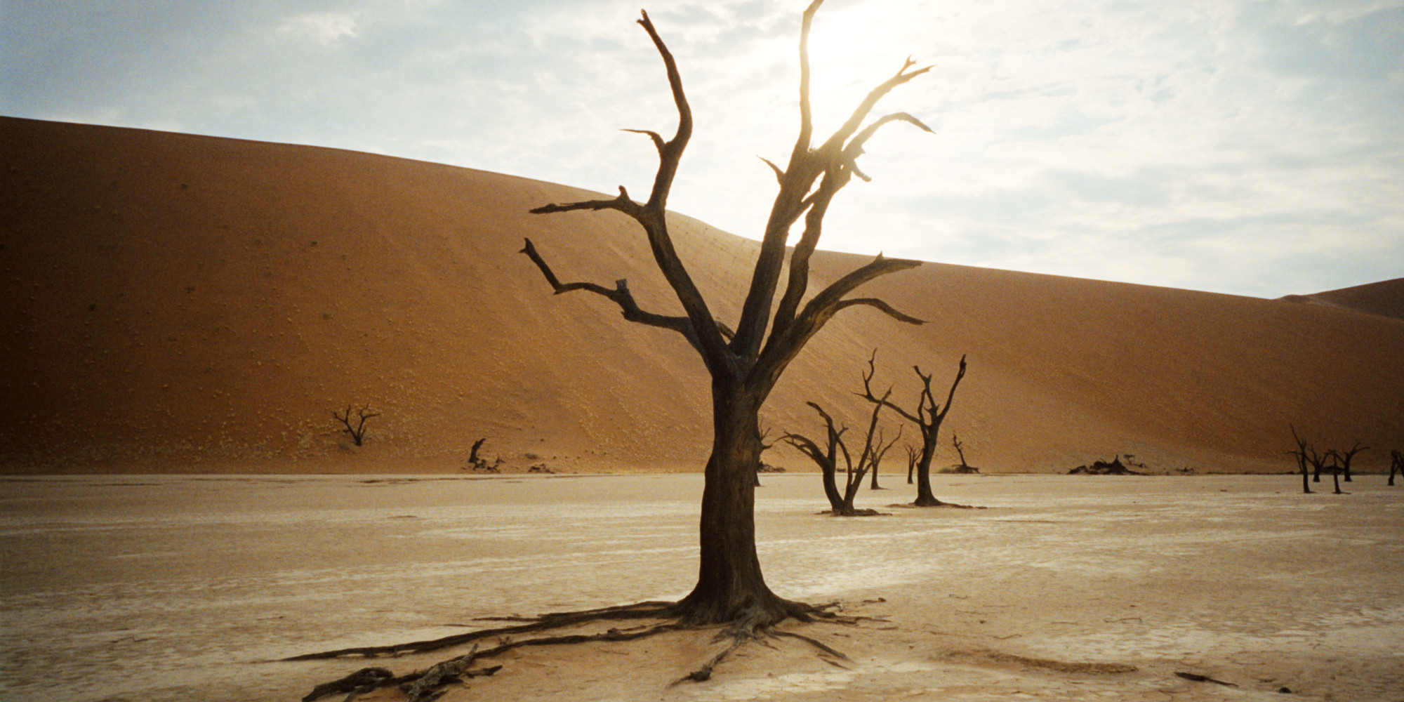 Deadvlei Is The Most Beautiful 'Dead' Place You Will Ever See