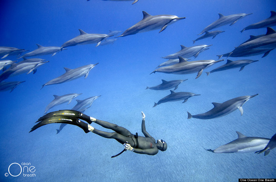 freediving7