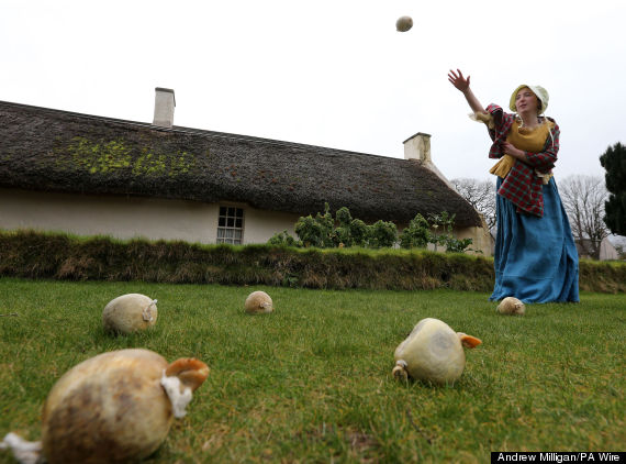 practice for the alloway 1759 haggis hurling compe