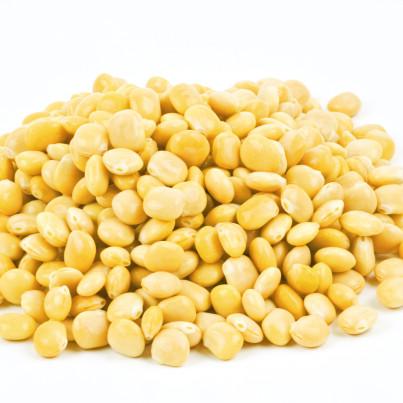 lupin grain