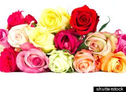 Skip The Red Roses And Try Giving These Flowers On Valentine's Day