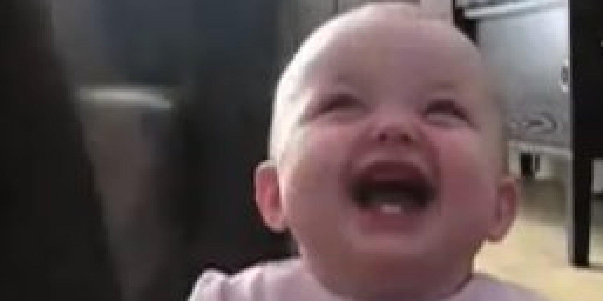 O BABY LAUGHING DOG Facebook
