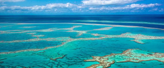 Great Barrier Reef Sediment