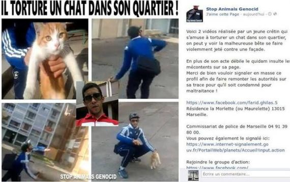 facebook farid