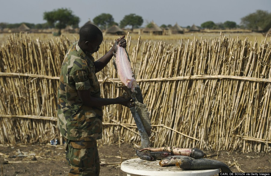 government soldier skins a fish in mathiang