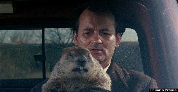 Groundhog Day Movie Quotes Extraordinary 8 Quotes To Make You Glad You Aren't Experiencing The Same