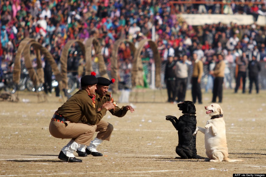indian border security force