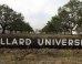 S dillard university mini