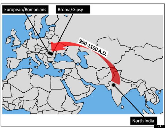 roma immigration