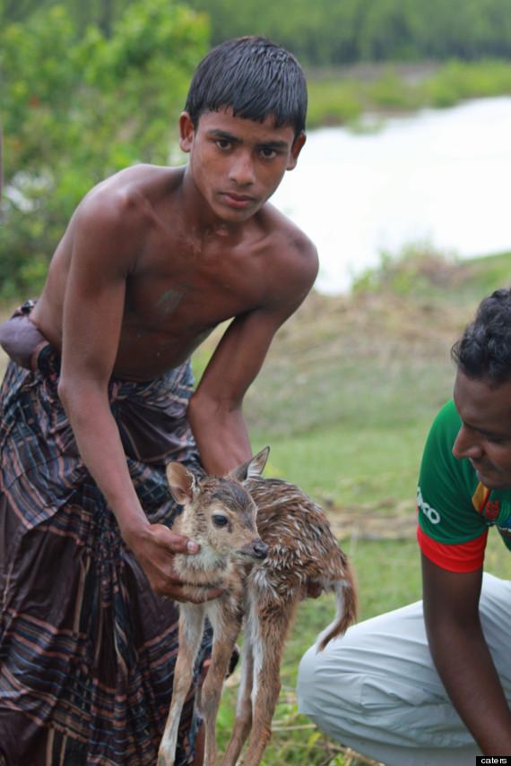 Image result for boy holding baby deer