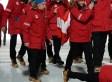 Austrian Athlete 100% Bites It During Opening Ceremony Of Sochi Winter Olympics (PHOTO)