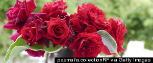 RED ROSES RF