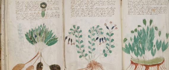 The Voynich Manuscript Decoded Voynich Manuscript