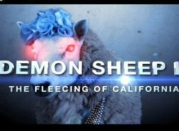 Demon Sheep