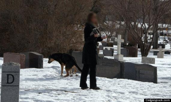 Dog craps on owner
