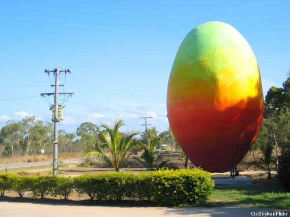big mango