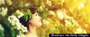 MEDITATION FLOWERS
