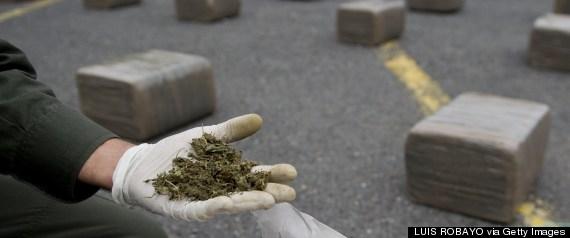 marijuana seizure