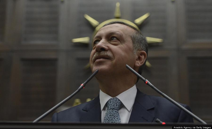anadolu erdogan