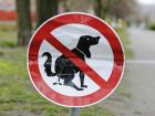 City Planning To DNA Test Dog Poop