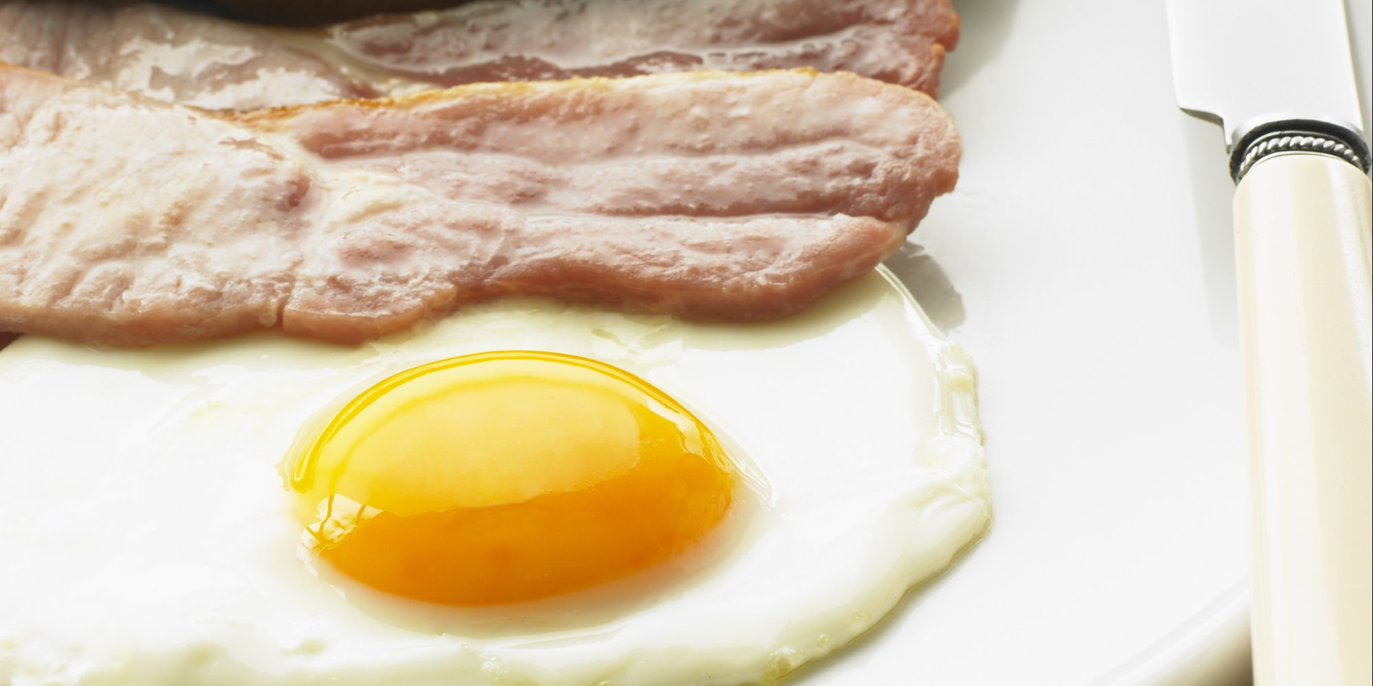 high protein diets Whether you're paleo, vegan, or counting macros, everybody needs protein build muscle, control hunger, and banish taste-bud boredom with the definitive list of high-protein foods for all diets protein builds your body it creates muscle it controls hunger it's a win-win whether your goal is .
