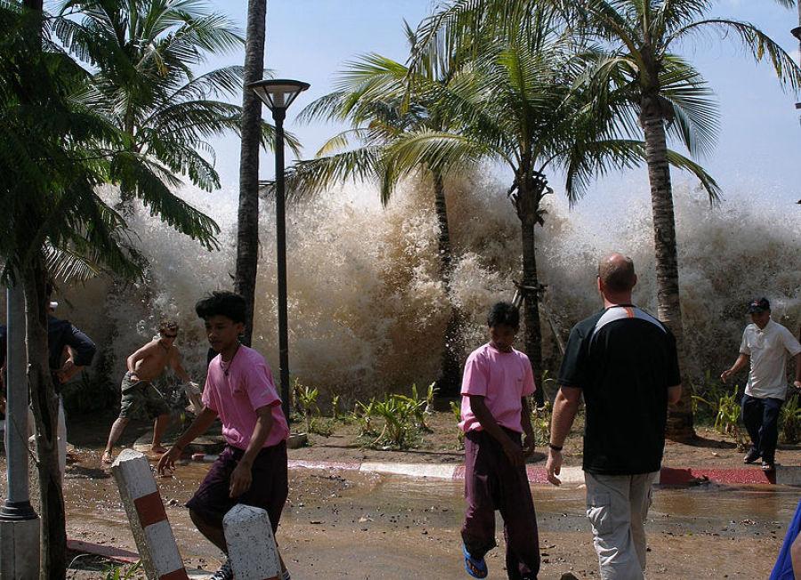 tsunanmi