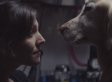 Tear-Jerking Chevy Commercial Will Strike A Chord With Every Single Dog Lover