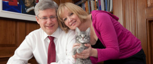Laureen Harper Cats