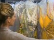 A Sympathetic Store Owner Turned To Facebook To Help Plus-Size Teen Find Prom Dress
