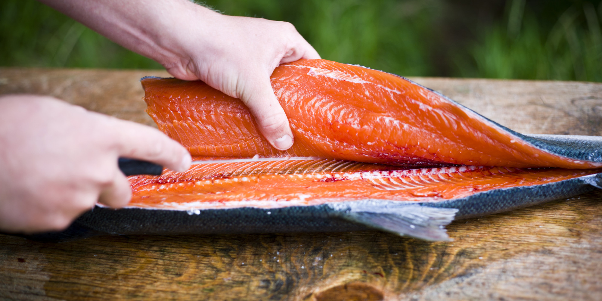 Fda weighing whether genetically engineered fish is safe for What fish is safe to eat