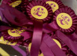 Want To Be A Ukip MEP? You Better Have The Cash..