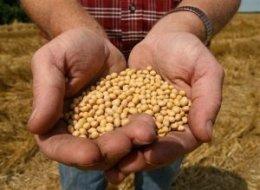 Monsanto's Poison Pills for Haiti
