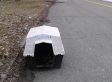 Dozens Of Dead Dogs Found In Detroit Park (GRAPHIC PHOTOS)