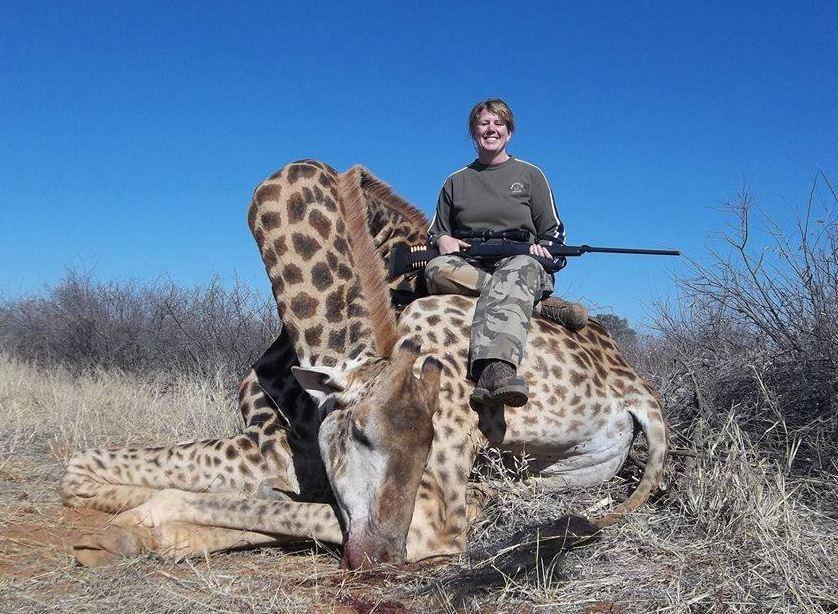 giraffe shot