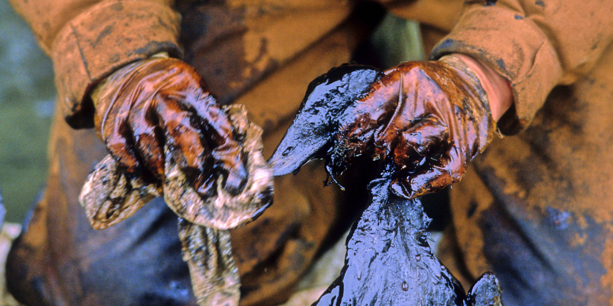the exxon valdez essay Summary the 1989 exxon valdez oil spill released millions of gallons of crude  oil into prince william sound alaska it was the worst.