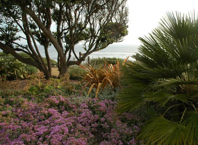 self realization gardens