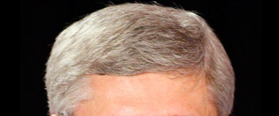 Here S How A Stephen Harper Dear Leader Haircut Would