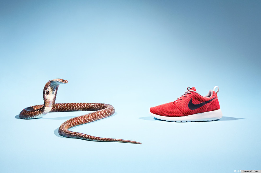 These Sneaker Photos Are Your New Worst Nightmare | HuffPost